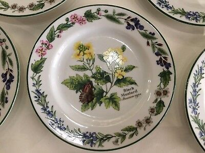 "Royal Worcester Pattern Herbs Black Mustard Side 6.75"" Bread Plate 1 to 8 plates"