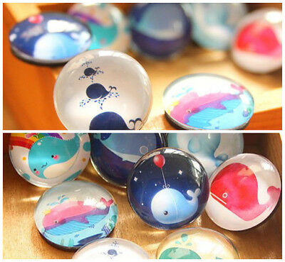 WHALE GLASS MAGNET - Beautifully Designed Glass Fridge Magnet - FAST DELIVERY