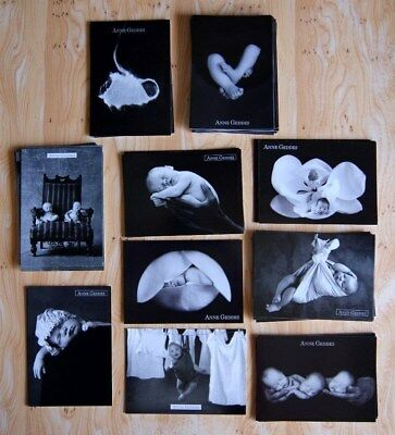 Lot De 64 Cartes Postale Anne Geddes Neuf Bebe Collection Revendeur Noir & Blanc