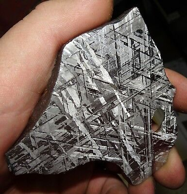 Beautiful Unique 218 Gm Etched Gibeon Meteorite Slice From Namibia