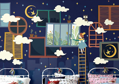 3D Sky Broom Witch 74 Wall Paper Murals Wall Print Wall Wallpaper Mural AU Kyra