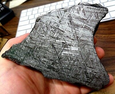 Beautiful 1532 Gm Etched Gibeon Meteorite End Cut From Namibia