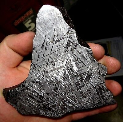 Beautiful Large 514 Gm Etched Gibeon Meteorite Slice From Namibia