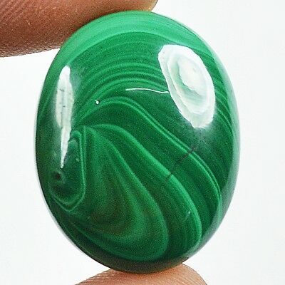 30ct Natural Glossy Royal Green Malachite Oval Cabochon Limited Stock WV23