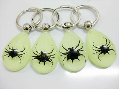 12pc wholesale vogue deaign real black spider-king glowing in dark key-chains