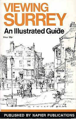 1973 Viewing Surrey An Illustrated Guide 20574