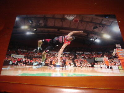 """Perth Wildcats Bryce Cotton Signed Photo """"Slam Dunk"""""""