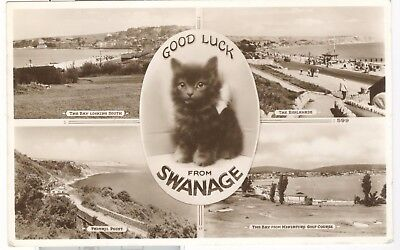 Good Luck from Swanage RP black cat