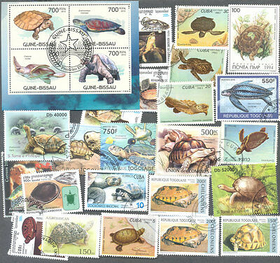 Turtles & Tortoises 50 all different stamp collection