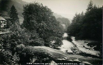View From The Bridge Dinas Mawddwy Super George & Son Real Photo