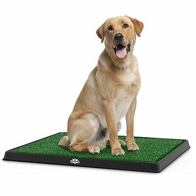 Dog Artificial Grass Mat Indoor Potty Training For Dogs Toilet Trainer Train Pad