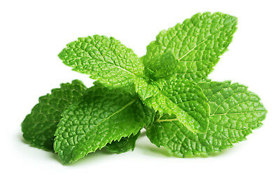 250 g Sauna Crystals Menthol Image photo wallpapers scent Infusion Oil