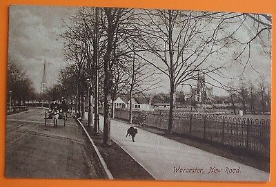 FRITH Postcard 1909 NEW ROAD WORCESTER WORCESTERSHIRE