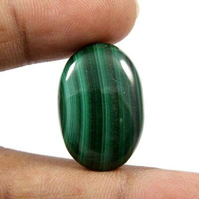 25.45 cts 100% Natural Excellent Designer Malachite Cabochon Oval Loose Gemstone