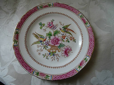 "Tuscan side plate 6 68"" replacement tableware"