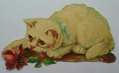 Emboss. Diecut, Victorian Scrap. Cat playing with a rose. Approx. 12x6&1/2cms.