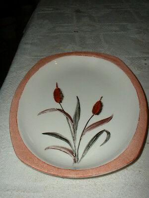 Nice Vintage Midwinter Hand Painted Pottery Plate