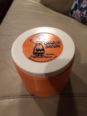 Vintage 1969  Charlie Brown Soup Thermos