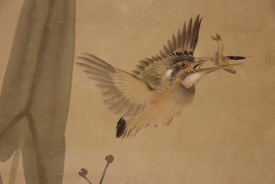 """JAPANESE HANGING SCROLL ART Painting """"King fisher"""" Asian antique  #E8018"""