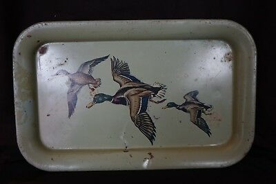 Wild Ducks Hires Root Beer 1950's Tray