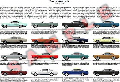 Ford Mustang 1964 - 1966 model chart GT Shelby 350 Hertz Gold High Country T-5
