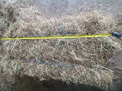 hay bales for sale long  horses sheep cows equestrian yard good value packed2017