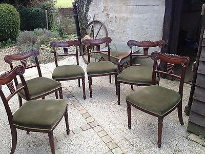 Set Of Six Exceptionally Nice Regency Mahogany Dining Chairs