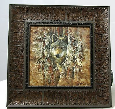 Framed Print Of Wolf In Trees   9-1/2 X 9-1/2