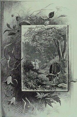 1880's Engraved Victorian Trade Card farmer Livermore & Co Cows Forest &E
