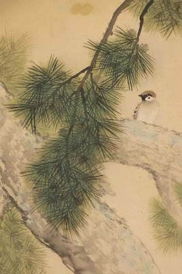 """JAPANESE HANGING SCROLL ART Painting """"Sparrow"""" Asian antique  #E8054"""