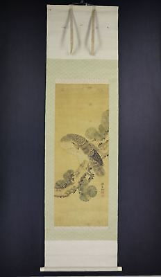 """JAPANESE HANGING SCROLL ART Painting """"Hawk"""" Asian antique  #E7897"""