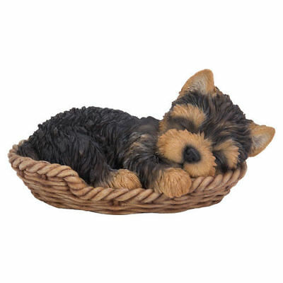 Yorkshire Terrier Puppy in a Basket Pet Pal Vivid Arts