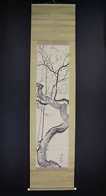 """JAPANESE HANGING SCROLL ART Painting """"Plum Blossoms"""" Asian antique  #E8087"""