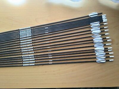19 Easton X10 450 Arrows In Very Good Condition Beiter I/o Nocks Points And Vane