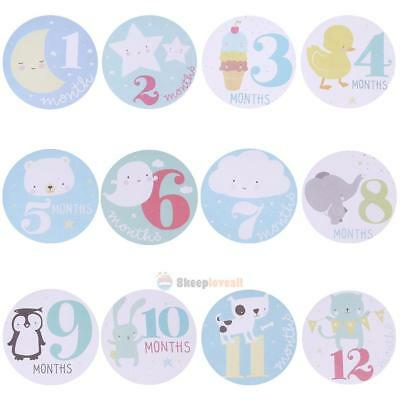 SL#W Baby Monthly Photograph Stickers Month 1-12 Milestone Stickers(Blue)