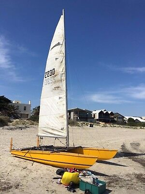 Paper Tiger 14' Sailing Catamaran