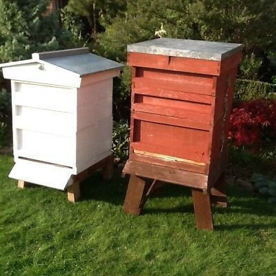 Two National Bee Hives With Queen Excluders Crown Boards All Frames And Stands