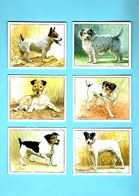 CIGARETTE/TRADE/CARDS. Imperial. DOGS. Jack Russell Terriers. (Set of 6).(1999).