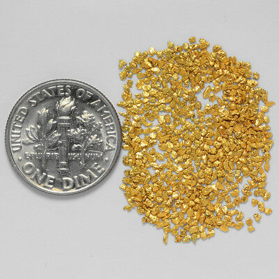 0.8764 Gram Alaskan Natural Gold Nuggets - (#20876) - Hand-Picked Quality