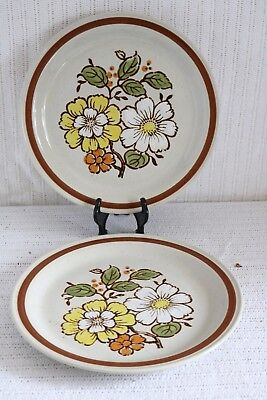 Imperial Stoneware SUMMERTIME H-1001 COUNTRYSIDE H-1000 Dinner Plates (2)