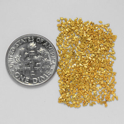 0.7379 Gram Alaskan Natural Gold Nuggets - (#20908) - Hand-Picked Quality