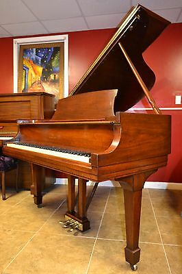 Steinway & Sons  Model M  Grand Piano /watch video  ,$60k replacement value!