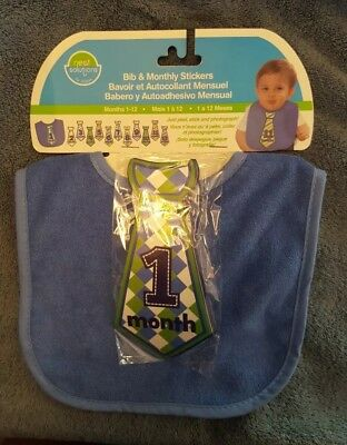Infant baby boy Bib and monthly necktie stickers announcement 1 through 12 month