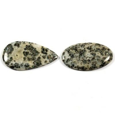 19.55cts Natural Mexican Fossil Pyrite Gemstone Mix Cabochon 2 Pcs Wholesale Lot