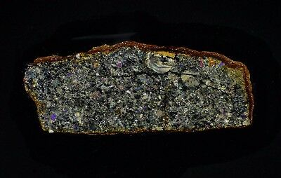 Meteorite transparent polished thin section Tsarev L5 Famous Russian chondrite