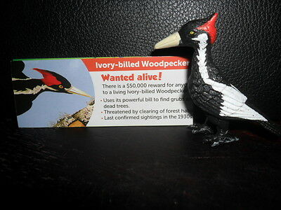 Yowie Yowies US Series 2 * BRAND NEW, * IVORY BILLED WOODPECKER * + PAPERS