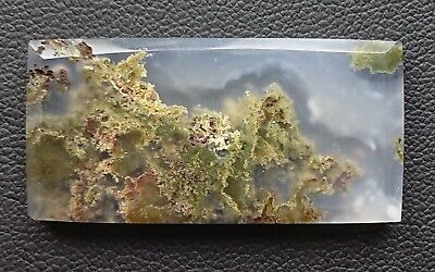 Agate paysage 43 carats - Natural moss agate Indonesia