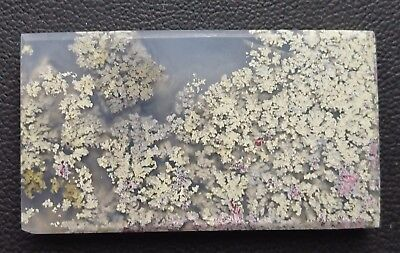 Agate paysage 83.8 carats - Natural moss agate Indonesia