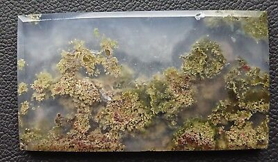 Agate paysage 57.6 carats - Natural moss agate Indonesia
