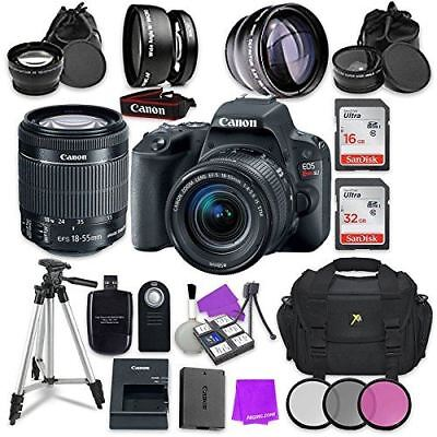 Canon EOS Rebel SL2 Digital SLR Camera with Canon EF-S 18-55mm IS STM Lens